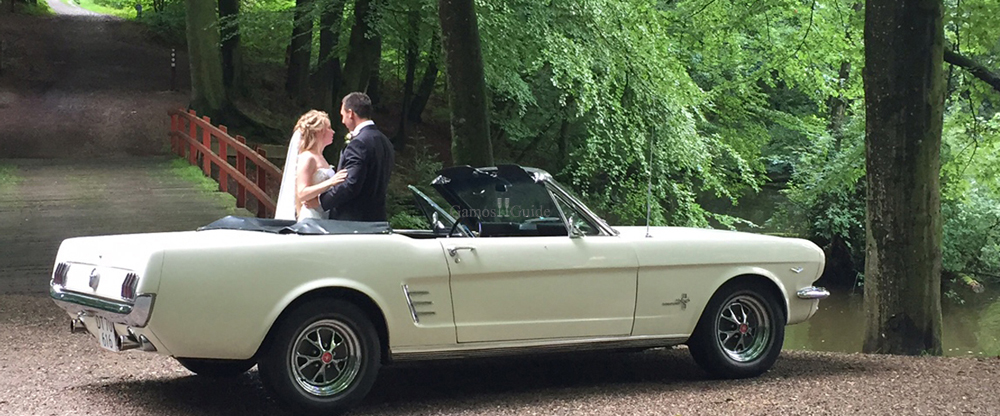 THE WEDDING MUSTANG